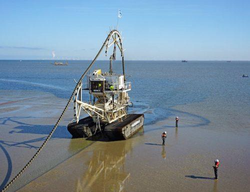 Windsector vecht voor blijvend subsidieloze sterke windparken op zee in het Noordzeeakkoord