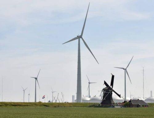 Reactie op artikelen Trouw, Groene Amsterdammer, EenVandaag over windenergie en natuur